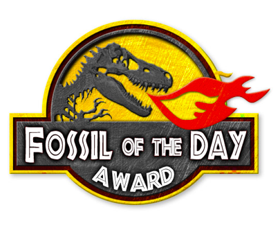 Fossil of the Day 405x332